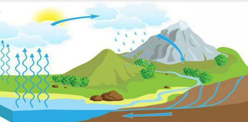 مراحل دورة الماء في الطبيعة المؤسسة الخضراء The Green Establishment