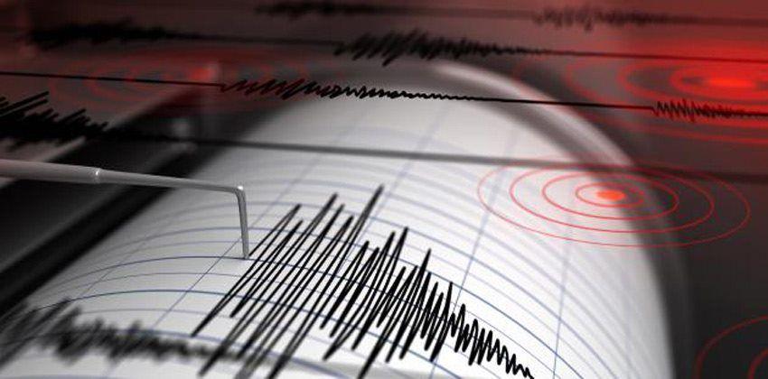 مبدأ عمل مقياس الزلازل المؤسسة الخضراء The Green Establishment