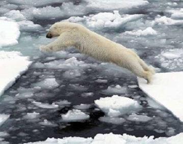 ذوبان الجليد
