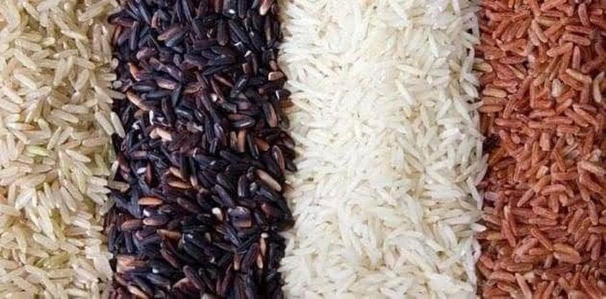 الأرز الأسود