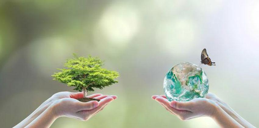 التوازن البيئي