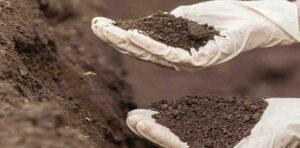التربة الزراعية